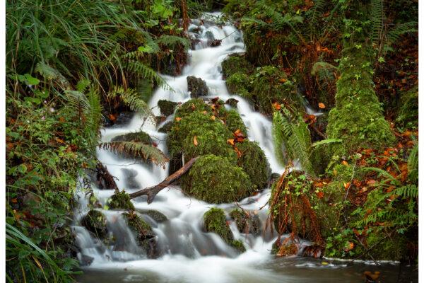 Foynes Falls
